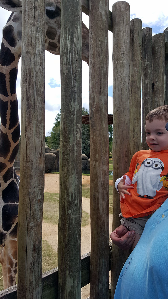 Our Trip to the Montgomery Zoo