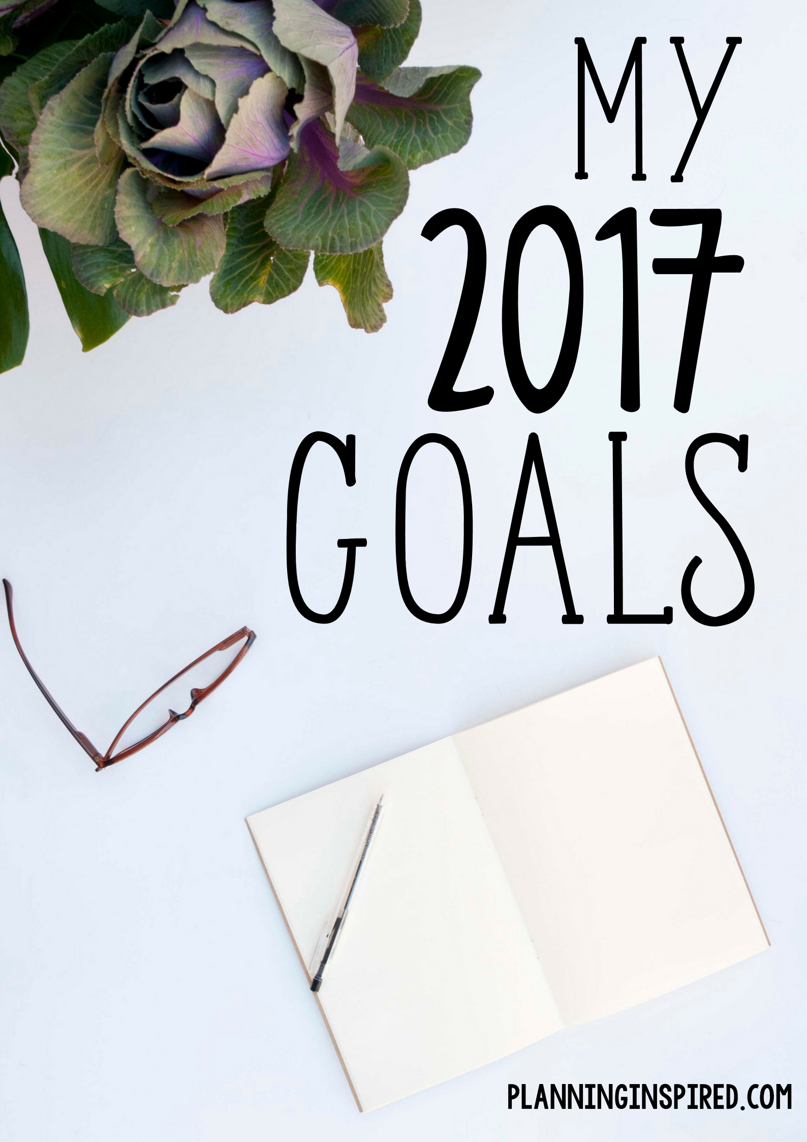 My 2017 Business & Financial Goals