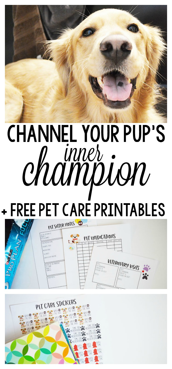 Channel Your Pup's Inner Champion in 4 Easy Steps + FREE Pet Care Printables