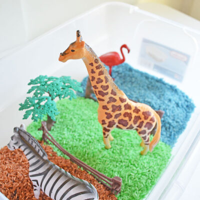 Sensory Bin Idea – Zoo/Safari Theme