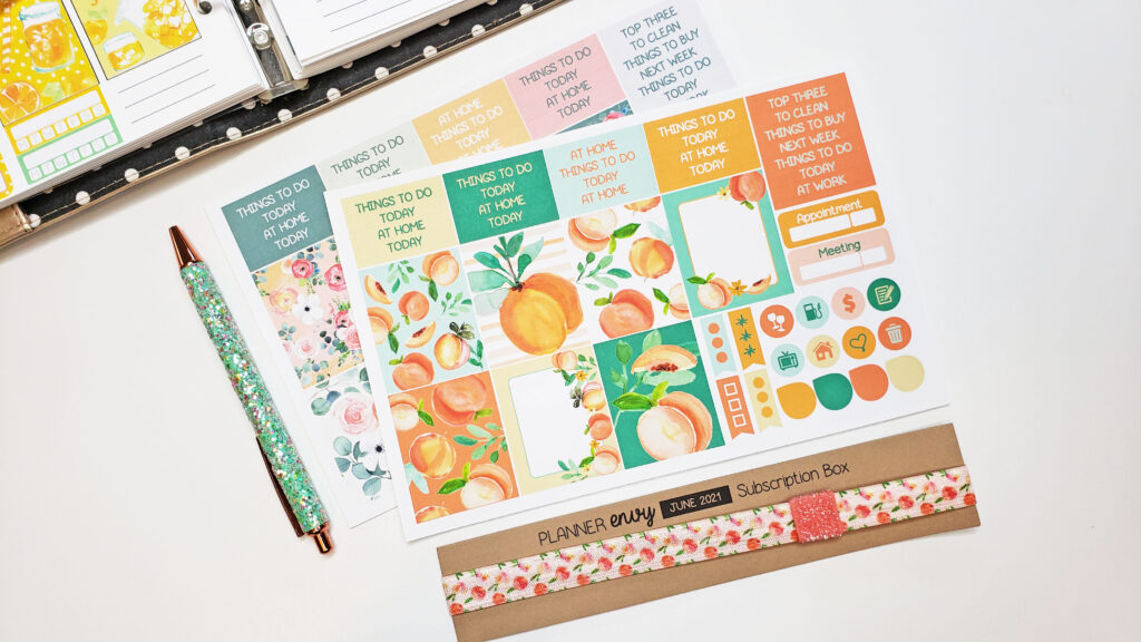 June Planner Envy Box + A5 Plan With Me!